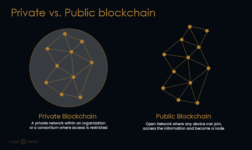 Private vs Public Blockchain